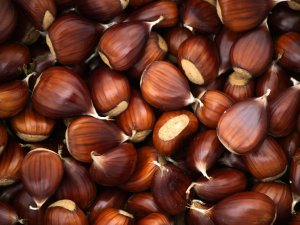 Castagne o marroni? Ecco le differenze